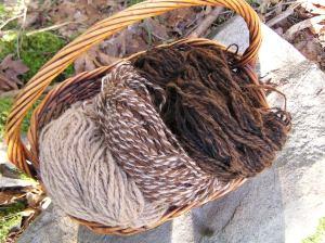 Alpaca fibre from Salt Spring Island