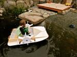 paddle wheeler