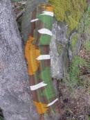 moss & arbutus