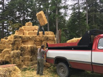 moving bales