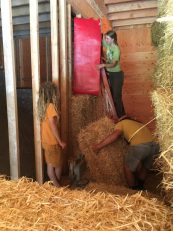 crazy carpets helped the bales slide into place